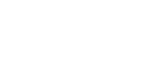 MORE THAN 1,200 PIRELLI HOMOLOGATED TYRES, FOR PERFECT DRIVING